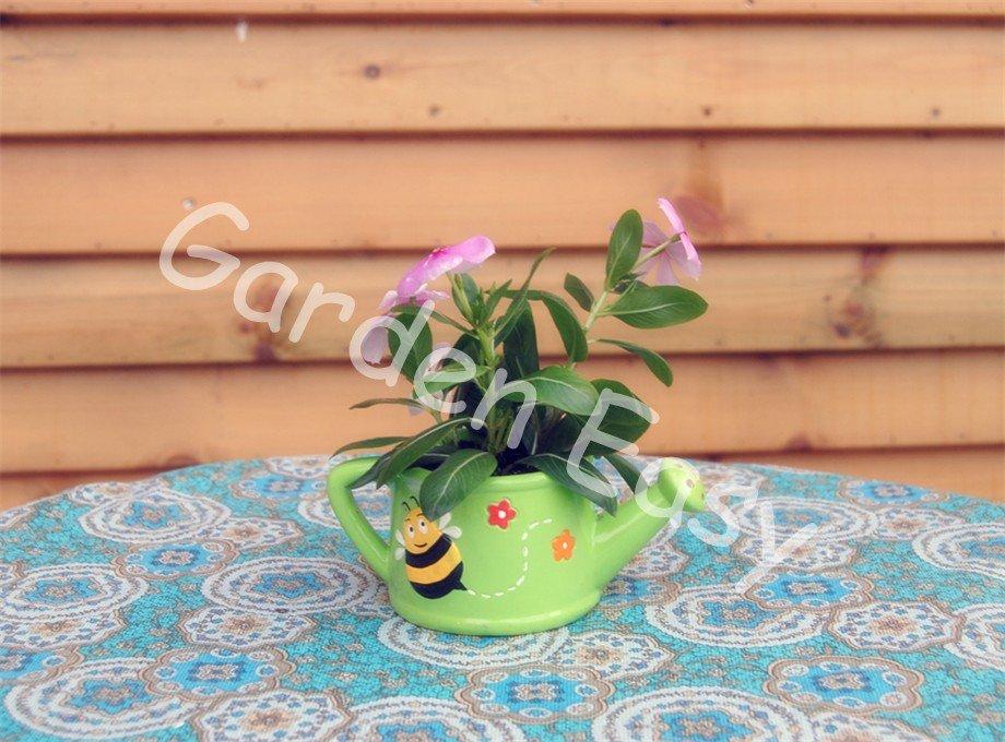 5.5 Inch Colorized Terracotta Garden Pot Planting