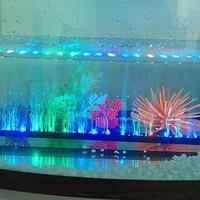 Светодиодная лампа для растений KLEER 1 RGB 31 3W Shpping SQ-12(31CM)01