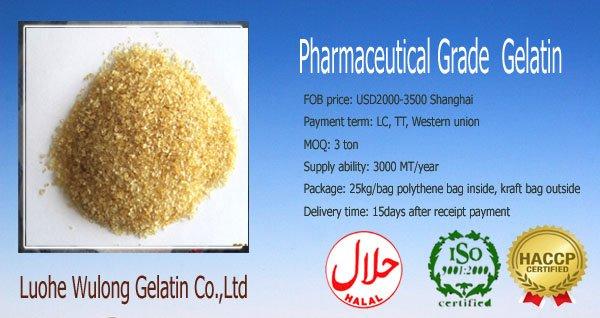 Medical Gelatin (ISO,HACCP certificated)