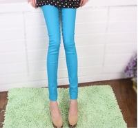 Fashion Sexy 2012 New Korean thin cotton Flexible Leggings Stretchy Pencil Pants/Trousers 10 Colors free shipping W051