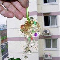 Удобрение для растений , /wolesales