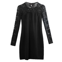 Free Shipping,2012 Autum Lace Long Sleeve Hollow Out Slim Dress,black/white  A12030