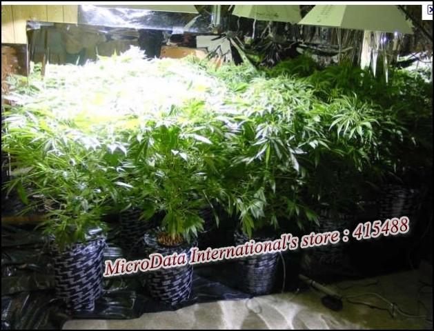 Освещение для растений 85 265V 5500lm 150LED в интернет-магазине Сena24.ru