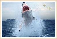 качество творческого акула кружка Кубок стекла, акула голову insaide кружка, сумасшедший ужасная акула кружка чашка, 1 шт, хороший рождественский подарок