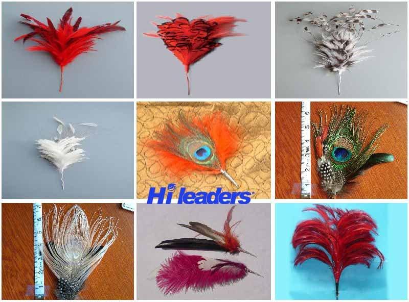Copricapo indiano tinto decorativo della piuma