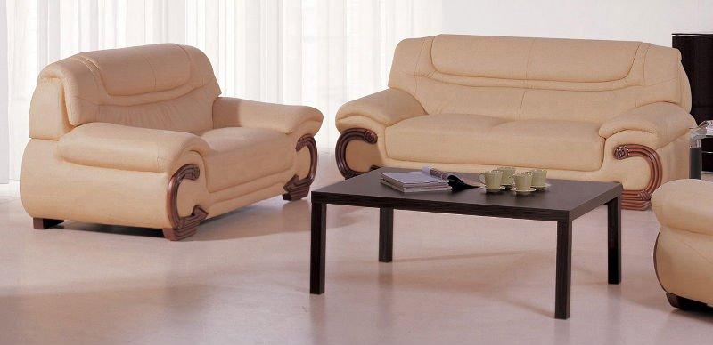 modern leather sofa( 298#)