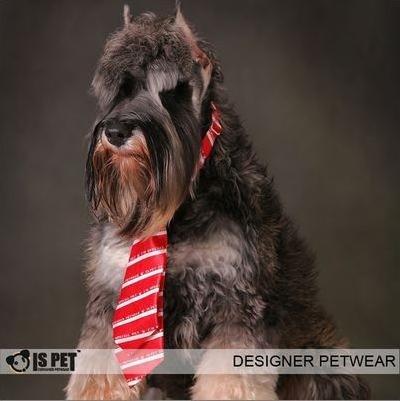 Fashion  on Wholesale Fashion Polyester Silk Pet Dog Necktie   Pet Coloful Bow Tie