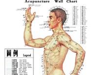 Массажер meridiarns acupoint &