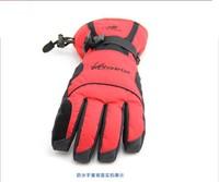 Лыжные перчатки Brand