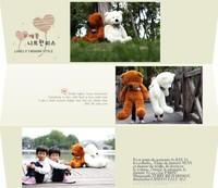 Детская плюшевая игрушка plush toys big hold bear teddy bear 100cm of cloth dolls wedding gift birthday gift