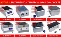 Индукционная плита DINGLONG 5000W DL-B-5KW-EL