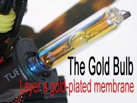gold bulb.jpg