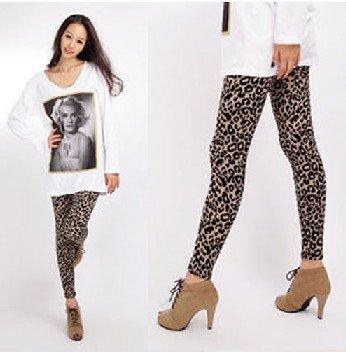 Fashion Leggings For Women