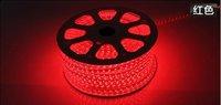 free shipping 5M/lot SMD3528 LED strip light  220v 230v240v  Flexible tube type Tape Lights 5m 300leds Waterproof