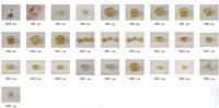Ювелирные изделия оптом 24 K 22cmx14mm ! zKb40