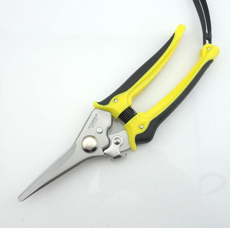 Инструменты сад ножницы бесплатная