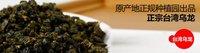 Free Shipping!2013 the organic 1kg Taiwan High Mountains Jin Xuan, Milk Oolong Tea, Frangrant Wulong Tea,  chinese gift Tea