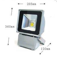Прожекторы OEM LED-100W