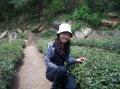 Ms. Effie Liu
