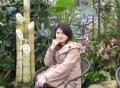 Ms. Sarah Wei