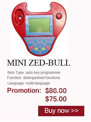 MINI ZED-BULL-2