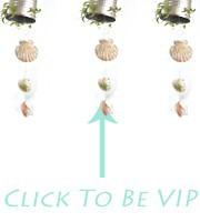 VIP(5)