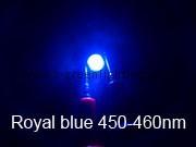 450-460nm-1