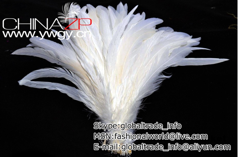 50 pcs lot 12-14inch(30-35cm) White Rooster Tail Feather Cock Tail Feather COQUE TAIL FEATHERS Loose for Hats or Costumes