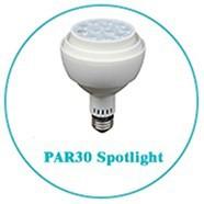 PAR30 Spotlight