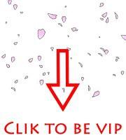VIP(4)