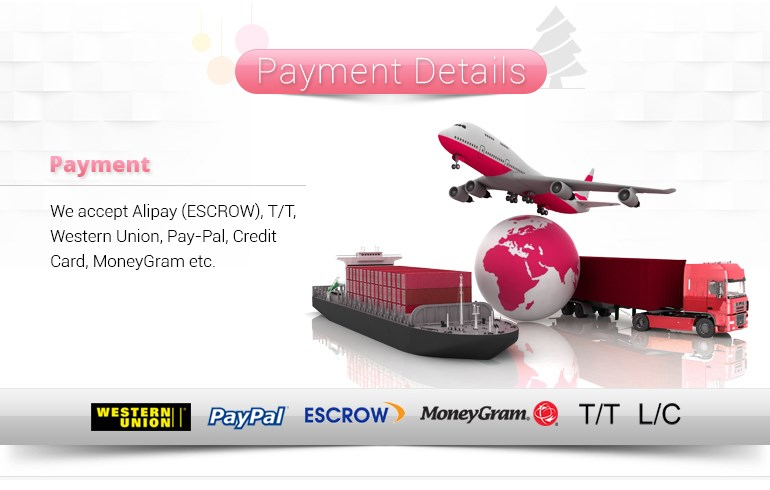 8-Payment