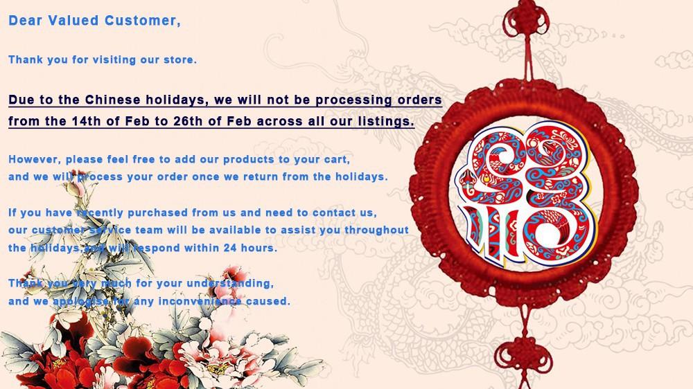Chinese New Year0