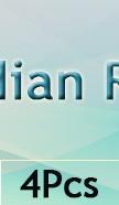 indian-lan-new_04