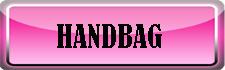 handbag-anniu