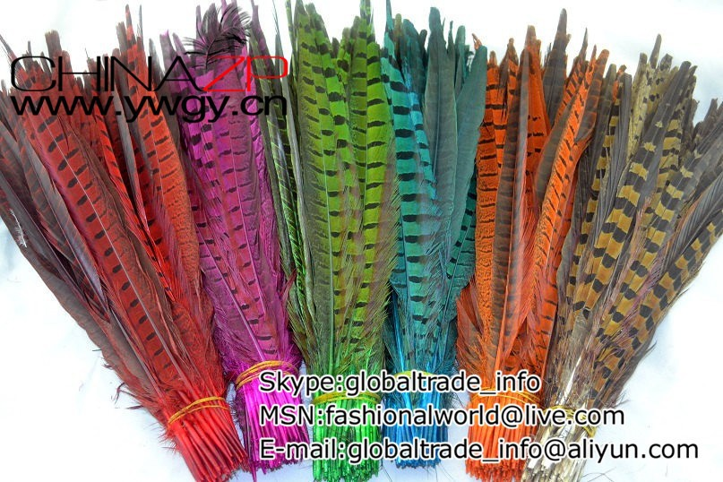 Dyed Ringneck Pheasant Tail feathers