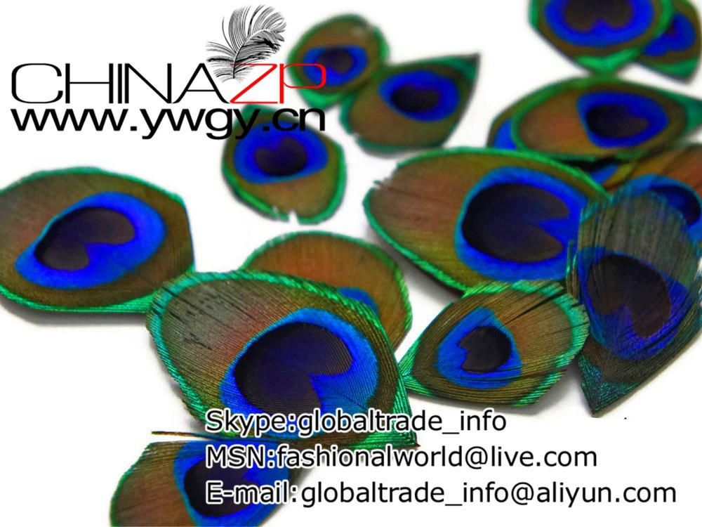Cut Eye, 10 Pieces - TRIMMED NATURAL Peacock Tail Eye Feathers