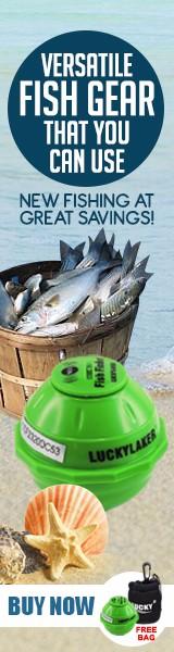 Fish-finder_vertical