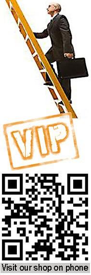 VIPBeachServiceNewLogo