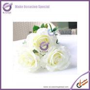 rose white flower1