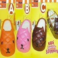 slipper2588da1