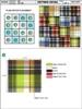Shorts Plaide Batch Fabric