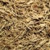 Suma Cut Dry Extract