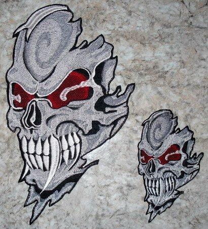 bones of skull. ones of skull.