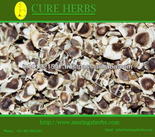 50 toneladas Moringa semillas para la exportación-Semillas