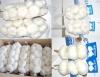 3P Pure White Garlic