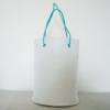 Shopping Bag/Tote Bag/Promotion Bag/Hand Bag