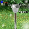 Solar Stainless Steel Lawn Light