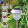 Solar Cupreous Effect Lawn Light
