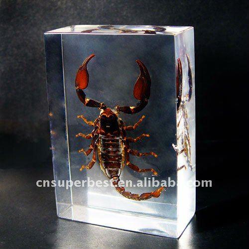 Armario Ikea Segunda Mano ~ resina acrilica o blocco con dentro insetto arte civile Id prodotto 482876241 italian alibaba com