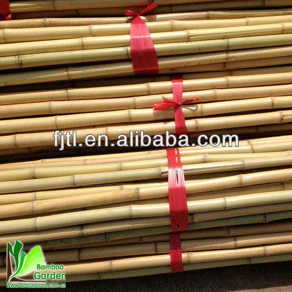 Natura secco dritto bamb rattan canne materie prime di for Vendita bambu